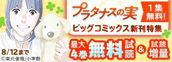「プラタナスの実」1集無料! ビッグコミックス新刊特集